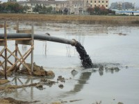 Reusing Dredge Materials for Habitat