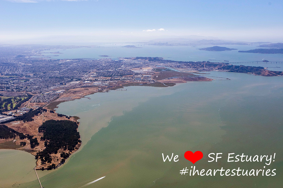 Aerial view of the North Richmond shoreline, with San Francisco, Bay Bridge, and Golden Gate Bridge in the background.