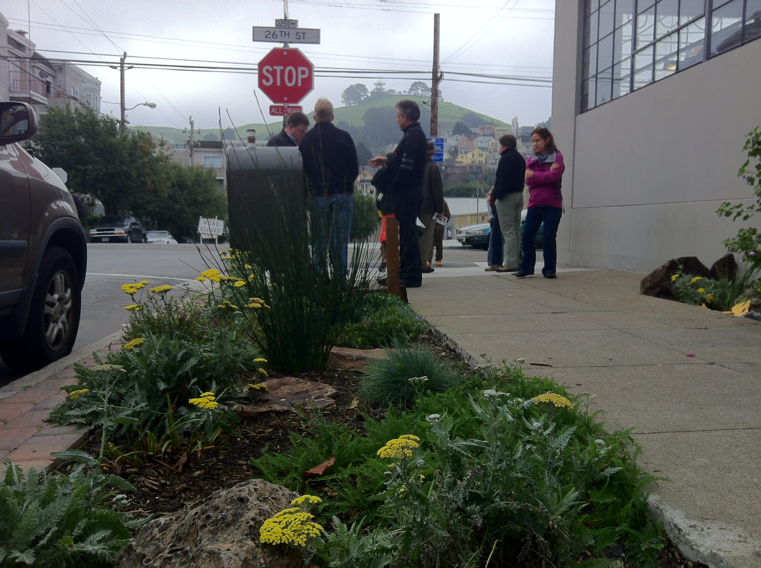 SF Urban Forest LID site visit