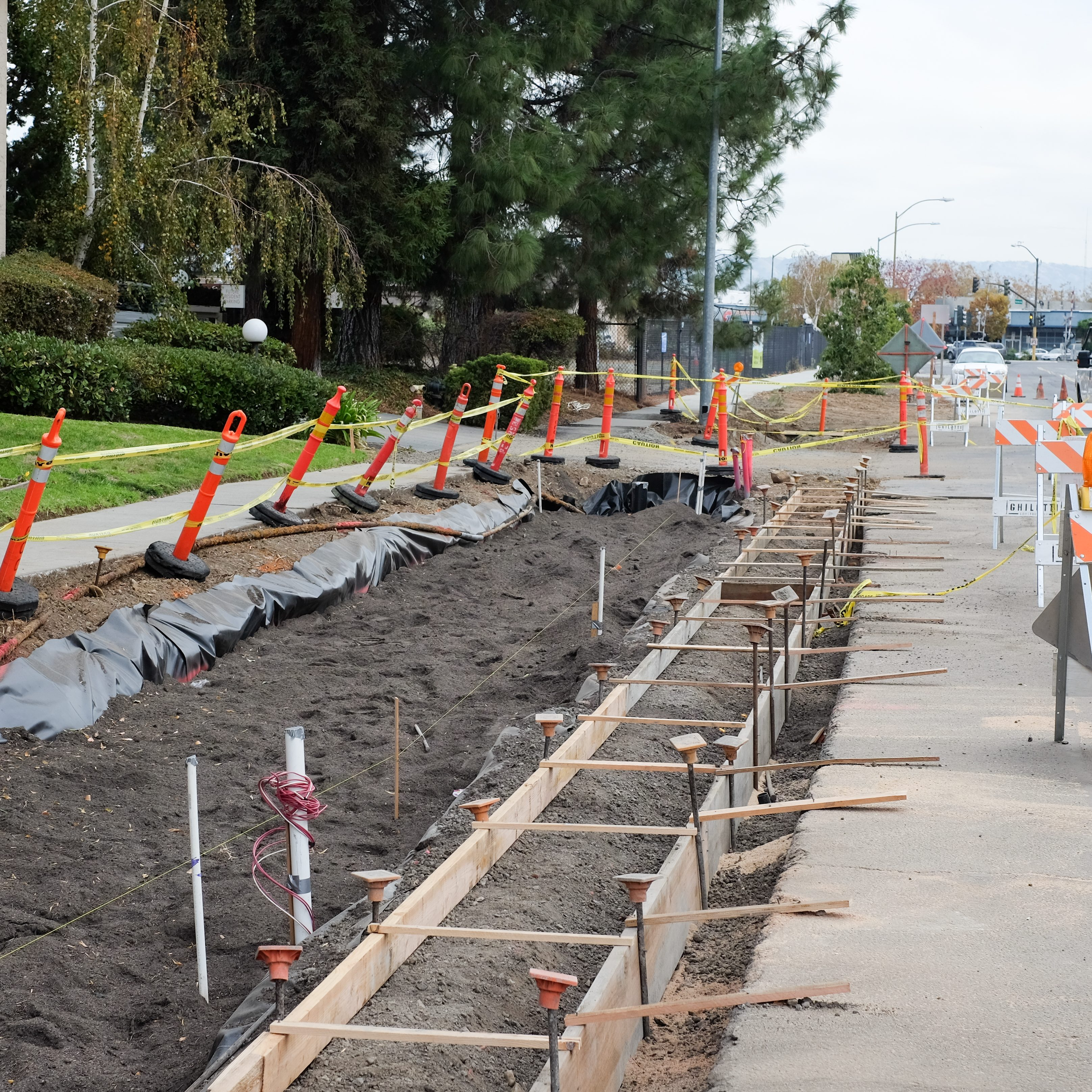 Construction of an urban greening project
