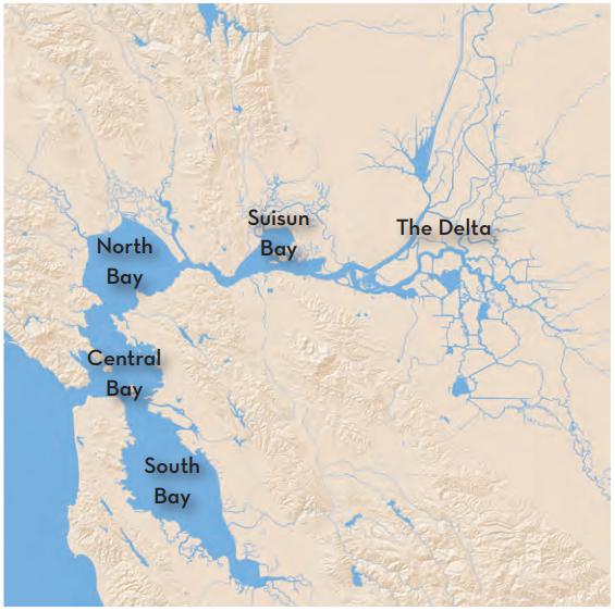 Regions of the Estuary