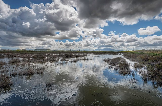 Clouds reflected in flooded wetland