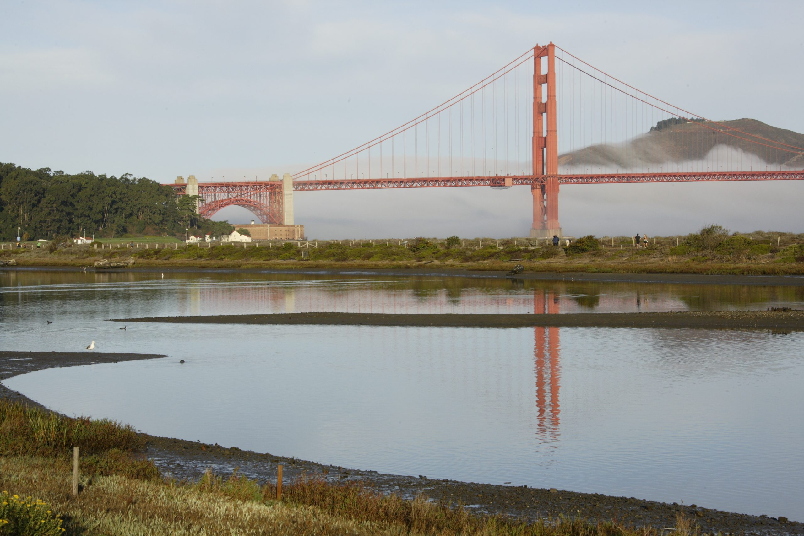 Image of Crissy Field with Golden Gate Bridge in the distance