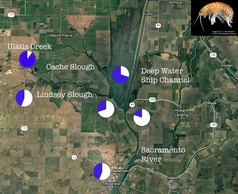 pesticide resistance delta map