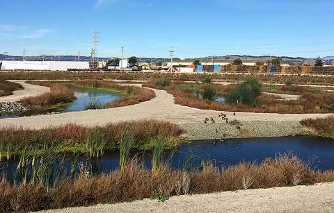 Transforming Urban Water Initiative