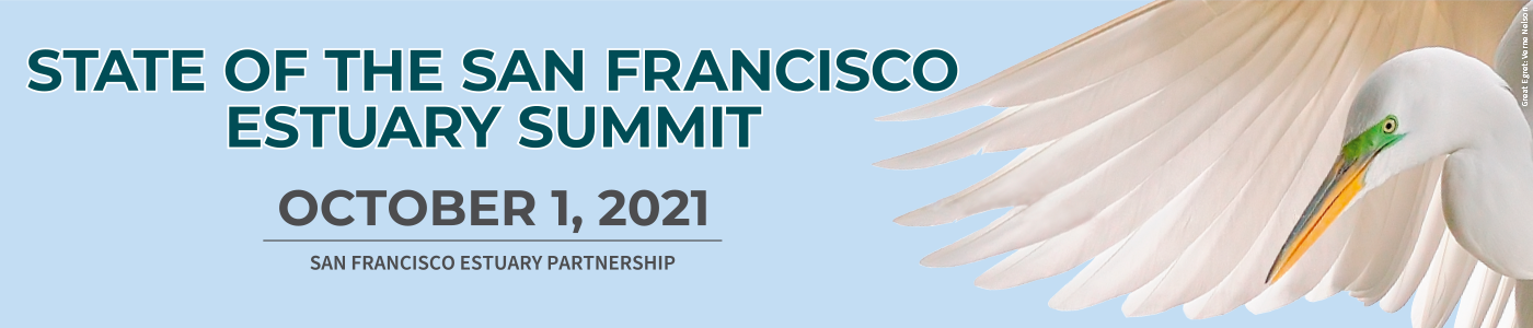 Banner for 2021 State of the Estuary Summit