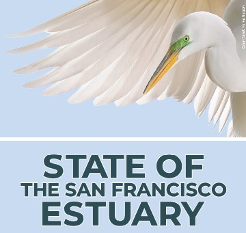 Logo for 2021 State of the Estuary Summit